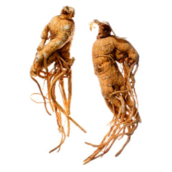 Ginseng can benefit weight loss in a number of ways, such as increasing energy and stamina and stabilizing blood sugar levels.